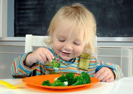 Nguồn dinh dưỡng ở các bé biết đi