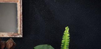 Tham khảo những cách cắm hoa khéo léo bằng bình thủy tinh