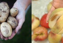 4 bước rửa sạch thuốc trừ sâu trên rau củ quả
