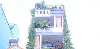 Ấn tượng với ngôi nhà 4 tầng hoa nở khắp ban công, rau trái đầy sân thượng