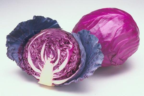 Thực phẩm màu tím giúp giảm mỡ thừa hiệu quả