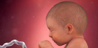 Thai nhi 38 tuần tuổi - bé biết nắm tay thật chặt