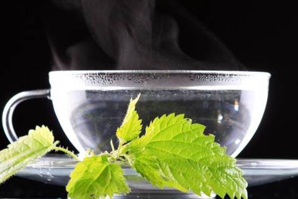 Detox cơ thể bằng nước ấm mỗi ngày