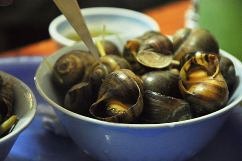 Ốc là thực phẩm được nhiều người yêu thích nhất là trong thời tiết se lạnh mùa thu đông (Ảnh minh họa: Internet)