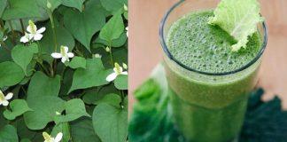 4 loại sinh tố rau củ giúp bạn giảm ngay 5cm vòng bụng chỉ trong 1 tuần