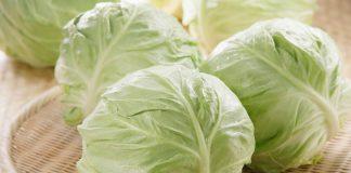 Những người tuyệt đối không nên ăn bắp cải