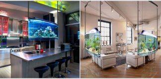 8 ý tưởng bể cá độc đáo cho nhà hiện đại - 5