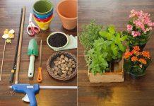 Tự làm chậu trồng rau thơm trong bếp cực độc đón Tết - 1
