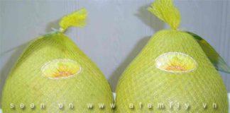 Hướng dẫn công dụng tuyệt vời của trái bưởi - 1