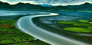 Huyền diệu vịnh Suncheon