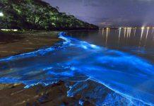 Bờ biển phát sáng ảo diệu tại quốc đảo Maldives