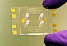Nhà khoa học Mỹ phát triển chip mới chẩn đoán lao