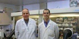 Tinh thể nano pha tạp chất dẫn điện tốt hơn