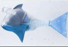 Airacuda - chú cá máy