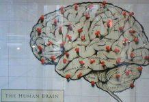 Khoa học có thể đọc suy nghĩ con người bằng giấy trắng mực đen