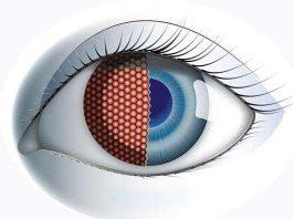 Chế tạo mắt ruồi nhân tạo cho máy bay không người lái