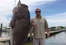 Câu được cá mú khổng lồ, năng hơn trăm cân